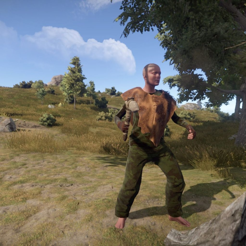 Enjoy the premium features within the rust game now