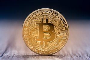 cryptocurrency elon musk